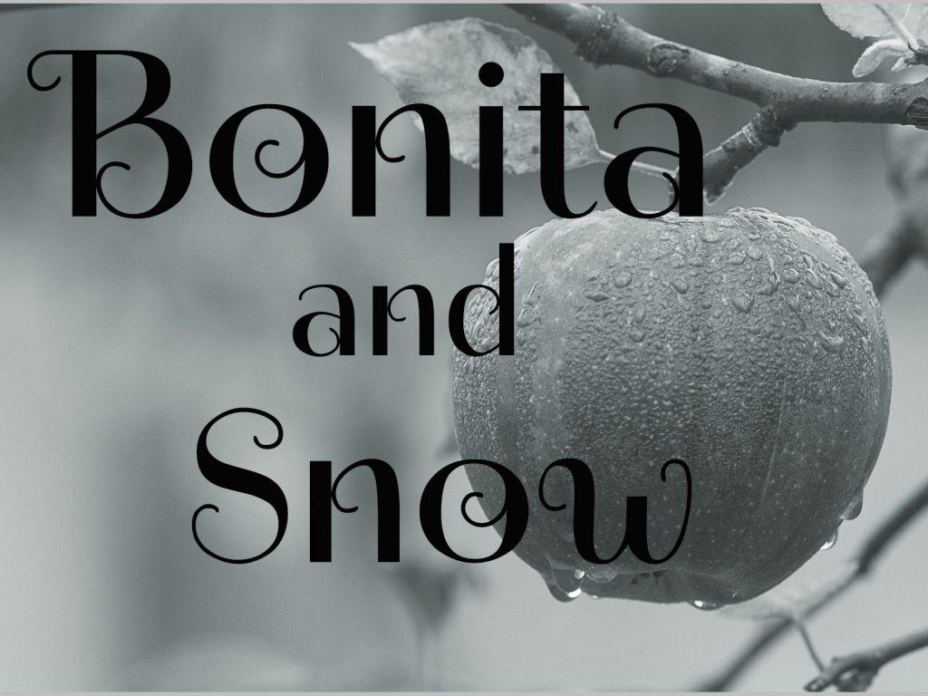 Short Story - Bonita and Snow